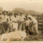 Marcando o gado - Fazenda Santa Albertina